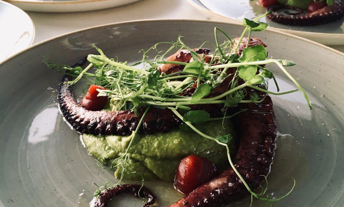 Delicious octopus